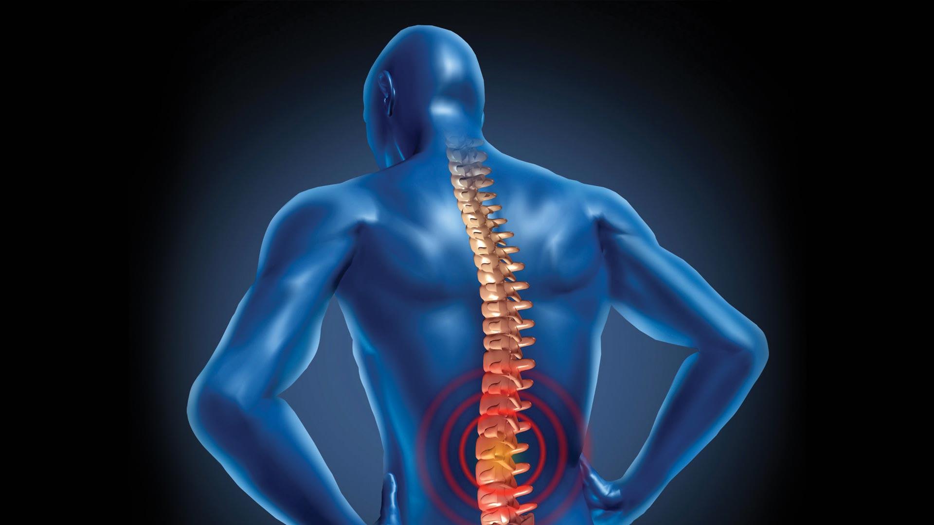 Qu'est-ce que la chiropraxie ? - Chiropraxie Centre Alsace ...